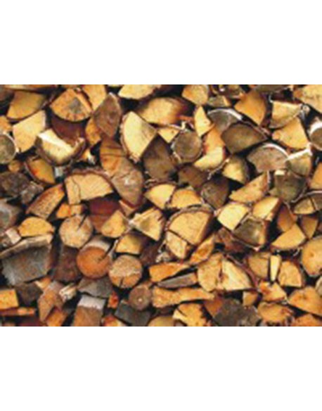 Fotomural Wood Logs
